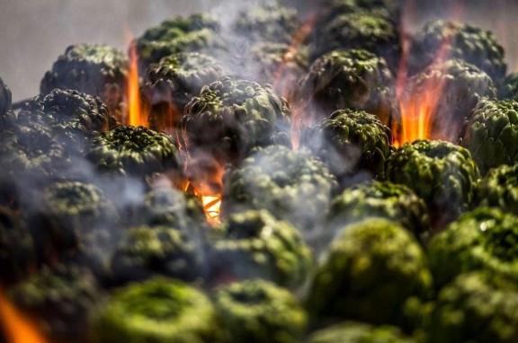 Las alcachofas de Benicarló cuentan con su propia D. O. P.
