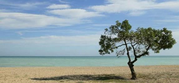 Las playas de Moncofa destaca por la calidad de su agua