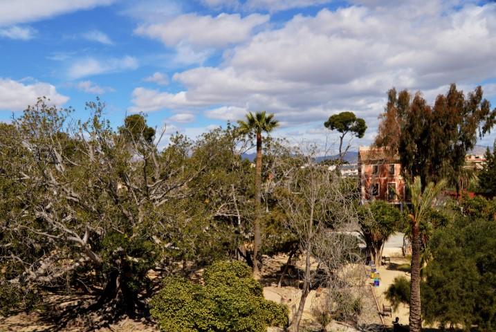 Vista panorámica de la finca La Concepción en Sant Joan d'Alcant